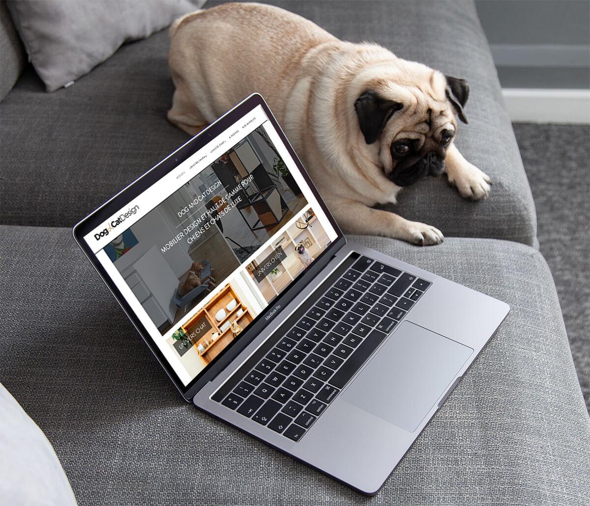 Bienvenu sur le blog de dog and cat design