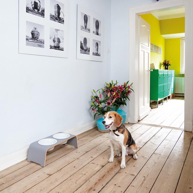 Gamelles surélevées en porcelaine pour chien Dogbar