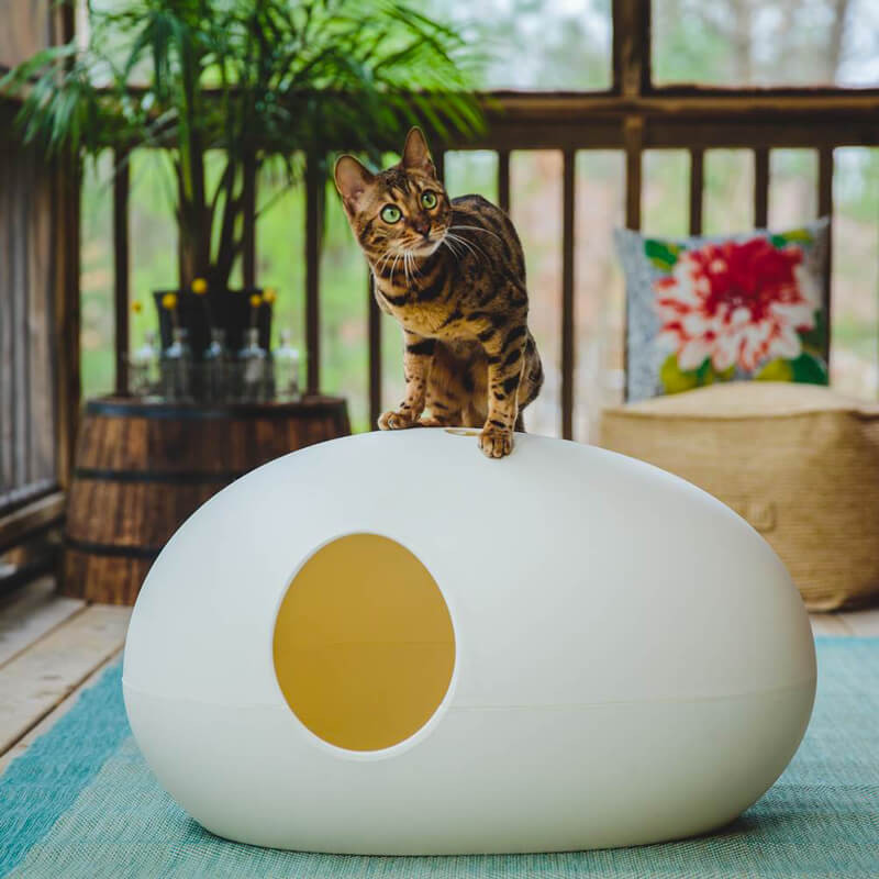 Maison de toilette ou niche pour chat design et pratique