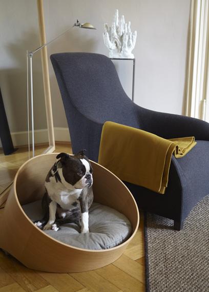 Mobilier design pour chien