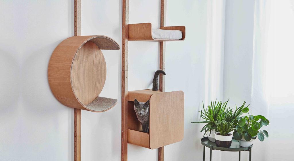 choisir son arbre à chat